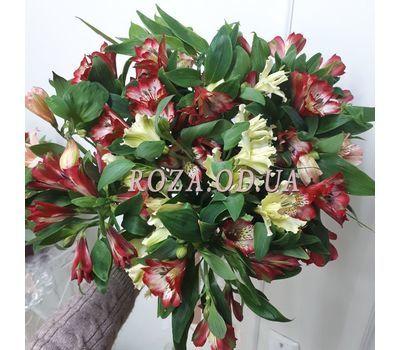 """Bouquet of 15 alstromeries 2"" in the online flower shop roza.od.ua"
