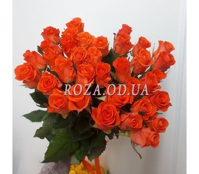"""35 roses 4"" in the online flower shop roza.od.ua"