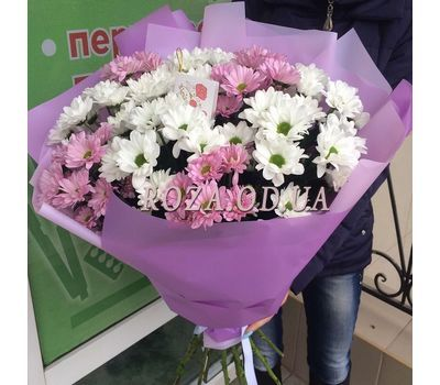 """Multicolored chrysanthemums 3"" in the online flower shop roza.od.ua"