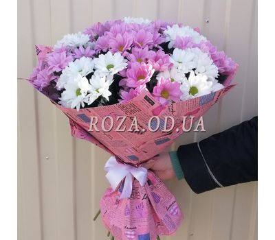 """Multicolored chrysanthemums 4"" in the online flower shop roza.od.ua"