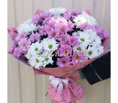 """Multicolored chrysanthemums 5"" in the online flower shop roza.od.ua"