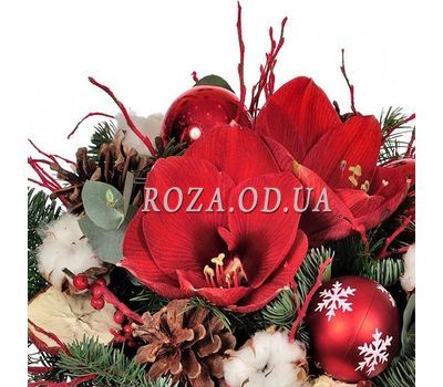 """""""Christmas composition with amaryllis 1"""" in the online flower shop roza.od.ua"""