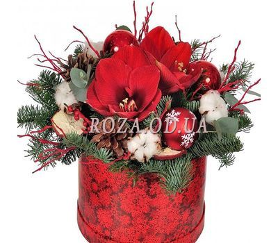 """""""Christmas composition with amaryllis"""" in the online flower shop roza.od.ua"""