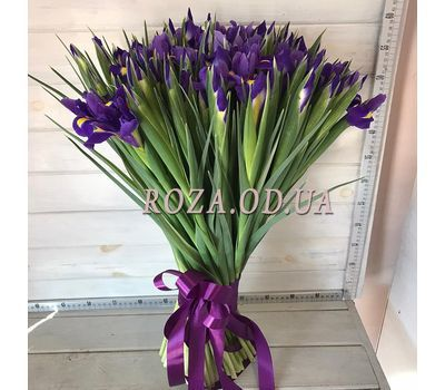 """101 iris 4"" in the online flower shop roza.od.ua"