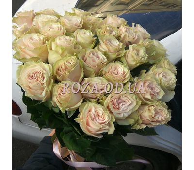 """""""31 rose Pink Mondial 4"""" in the online flower shop roza.od.ua"""