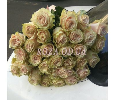 """31 rose Pink Mondial 5"" in the online flower shop roza.od.ua"