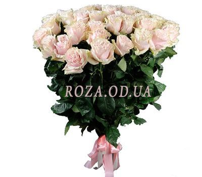 """31 rose Pink Mondial"" in the online flower shop roza.od.ua"