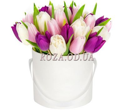 """""""Bouquet of 25 tulips in a box"""" in the online flower shop roza.od.ua"""
