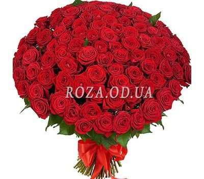 """101 red rose 60 cm"" in the online flower shop roza.od.ua"