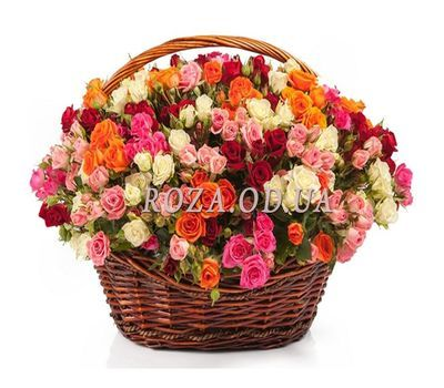 """101 cluster rose"" in the online flower shop roza.od.ua"