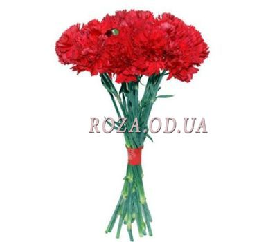 """11 red carnations"" in the online flower shop roza.od.ua"