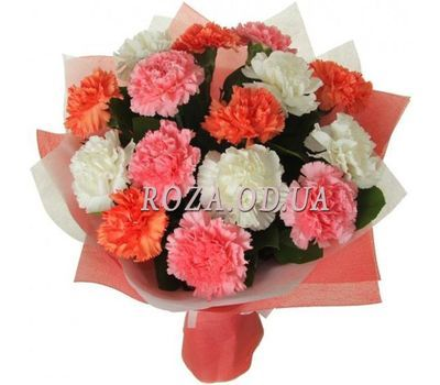"""""""15 different colored carnations"""" in the online flower shop roza.od.ua"""