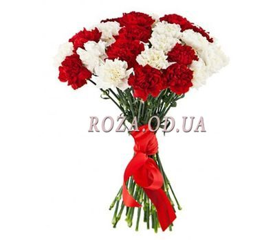 """25 white and red carnations"" in the online flower shop roza.od.ua"