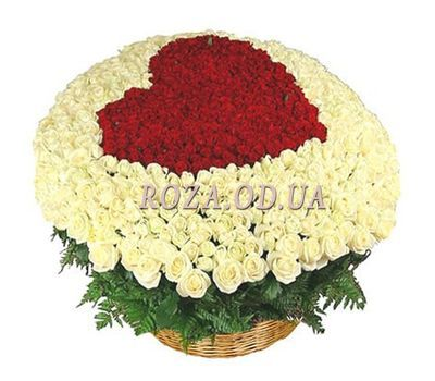 """""""301 roses in the basket"""" in the online flower shop roza.od.ua"""