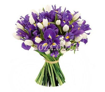 """""""51 iris and tulip"""" in the online flower shop roza.od.ua"""