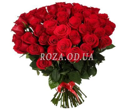 """51 red rose 50 cm"" in the online flower shop roza.od.ua"