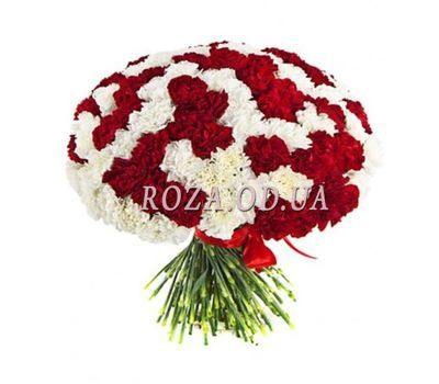 """Bouquet of 101 carnations"" in the online flower shop roza.od.ua"
