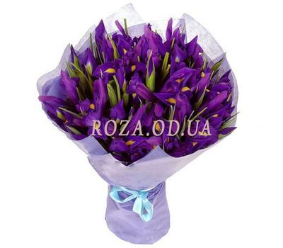 """Bouquet of 25 irises"" in the online flower shop roza.od.ua"