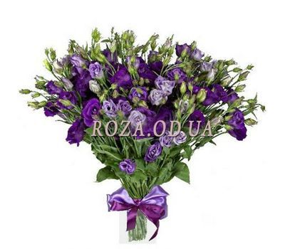 """""""Bouquet of 35 eustom"""" in the online flower shop roza.od.ua"""
