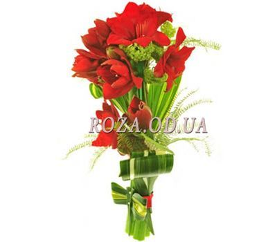 """""""Bouquet of 5 Amaryllis"""" in the online flower shop roza.od.ua"""