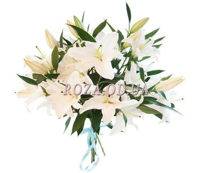 """5 white lilies"" in the online flower shop roza.od.ua"