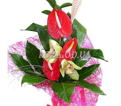 """Bouquet of anthurium and orchids"" in the online flower shop roza.od.ua"