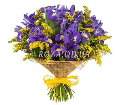 """Bouquet of irises and mimosa"" in the online flower shop roza.od.ua"