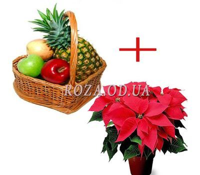 """Fruits for the New Year"" in the online flower shop roza.od.ua"
