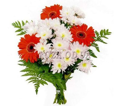 """Bouquet of gerberas and chrysanthemums"" in the online flower shop roza.od.ua"