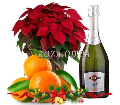 """New Year gift 2019"" in the online flower shop roza.od.ua"