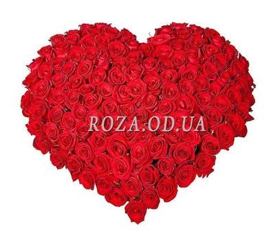 """Heart of 101 roses"" in the online flower shop roza.od.ua"