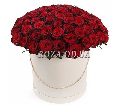 """101 red rose in a box"" in the online flower shop roza.od.ua"