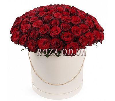 """""""101 красная роза в коробке"""" в интернет-магазине цветов roza.od.ua"""