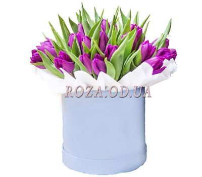 """Purple tulips in a box"" in the online flower shop roza.od.ua"