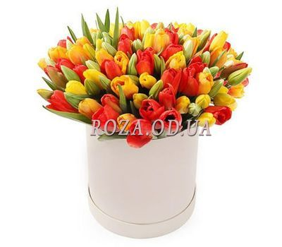"""Multicolored tulips in a box"" in the online flower shop roza.od.ua"